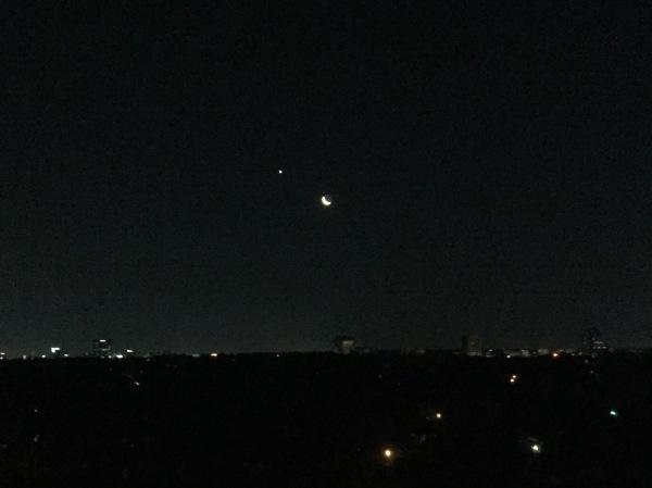dallas moon