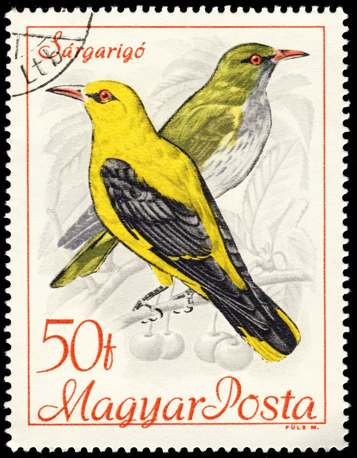 e8efb2131afd2eacedf4cef1f4f1fa53--postage-stamps-journaling